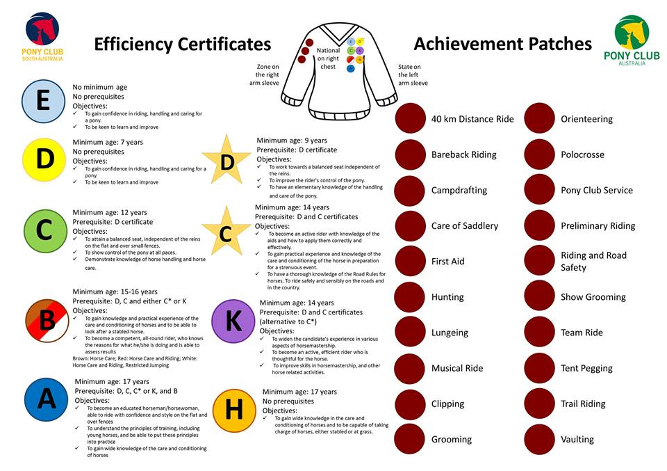Certificate Badge and Achievement path